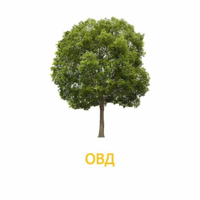 Оценка воздействия на окружающую среду ОВОС (ОВД)